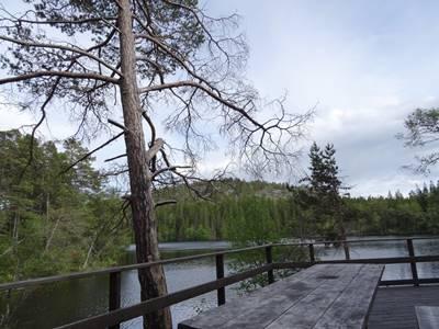 Picknickplatz Grillplatz Härnösand Smitingen Schweden