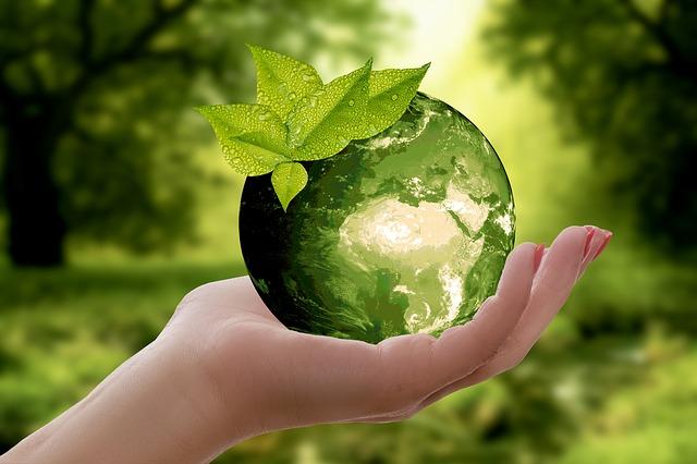 Symbolbild grüne Weltkugel in der Hand